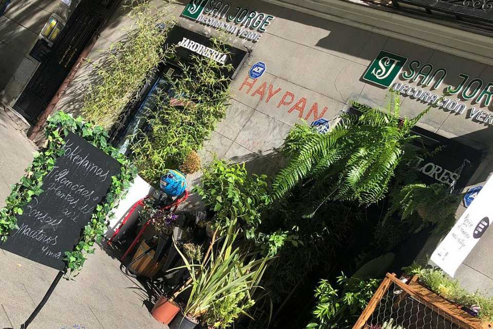 decoración natural Madrid
