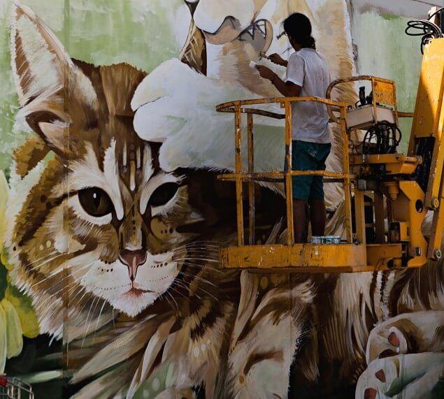 proceso del graffiti sobre muro