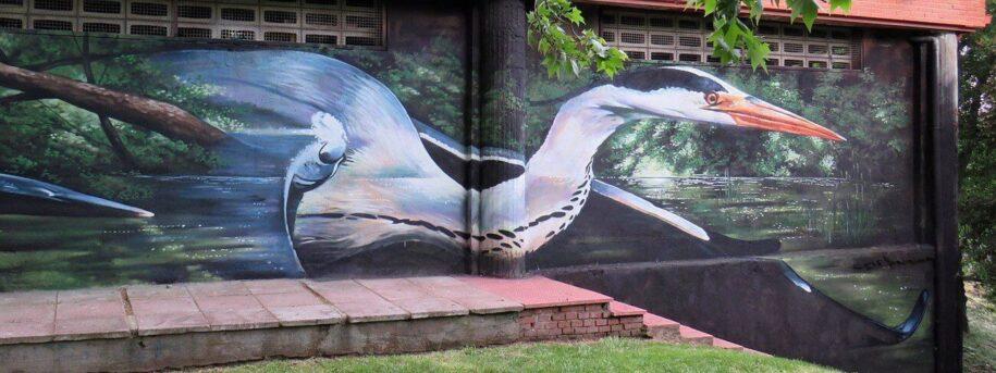 graffiti profesional y económico Madrid
