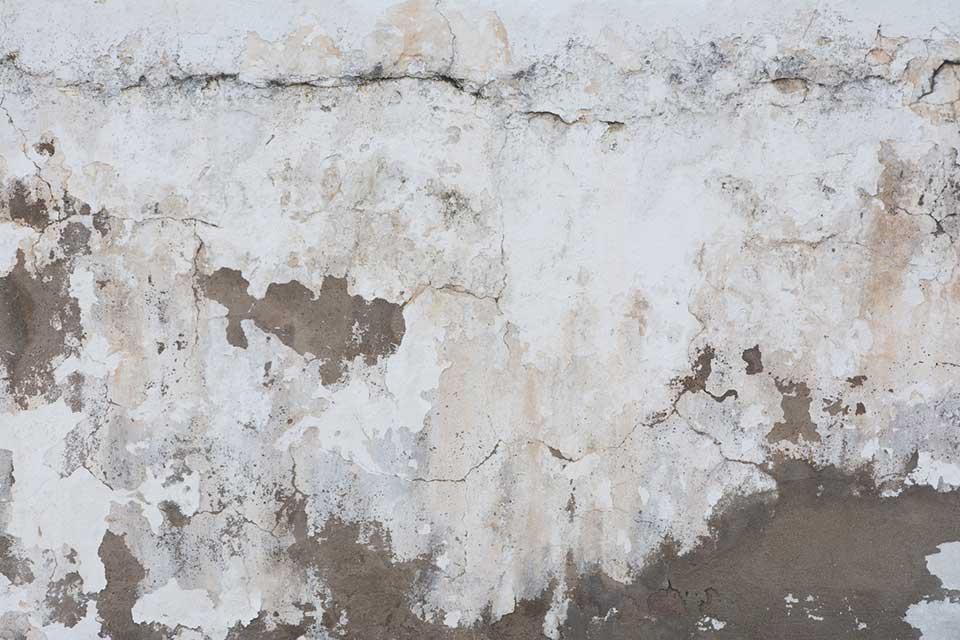 decoración sobre pared sin tratar